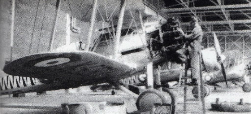 A 74 squadron, engine fitter.